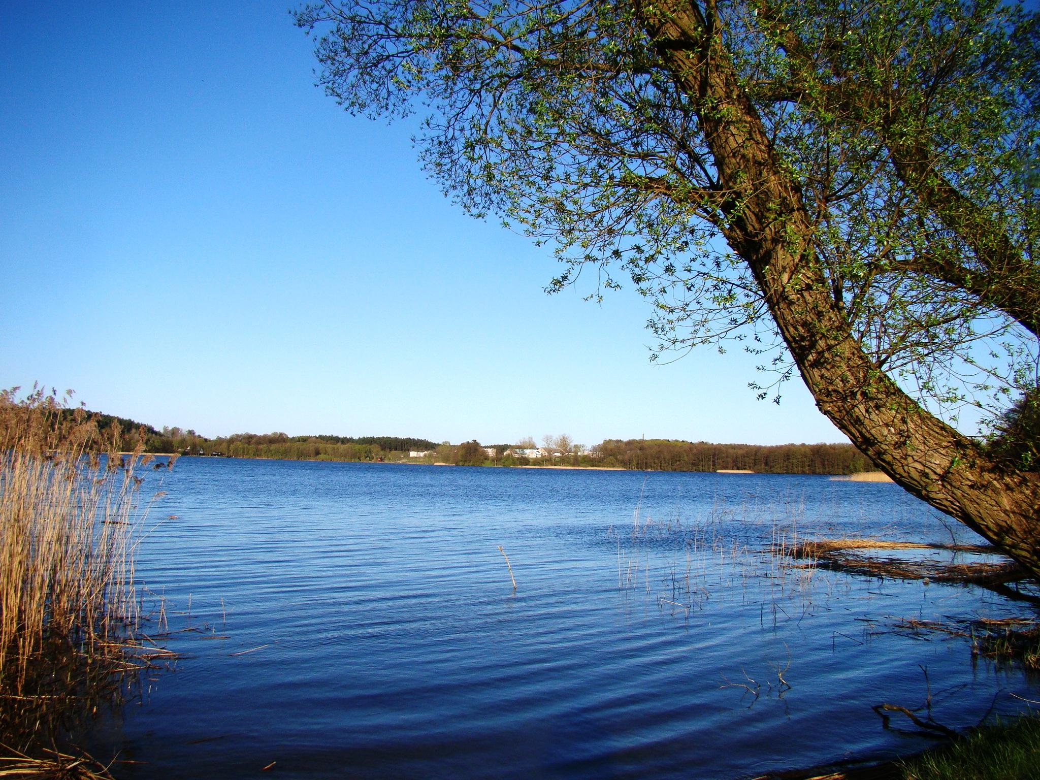Jezioro Zarybinek Katarzyna Karbowska